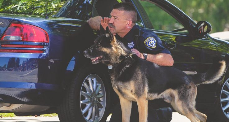 Police man with a police service dog